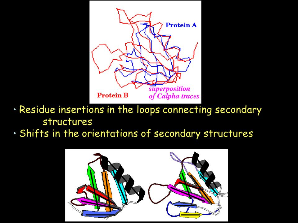Residue insertions in the loops connecting secondary structures