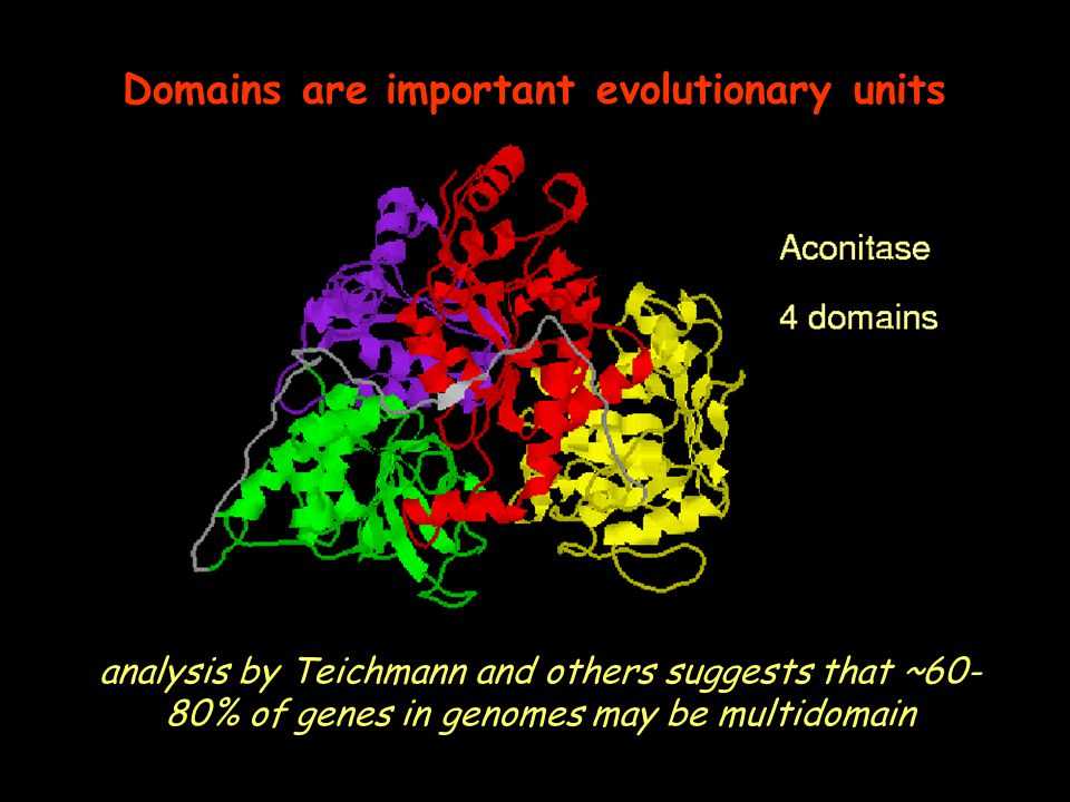 Domains are important evolutionary units