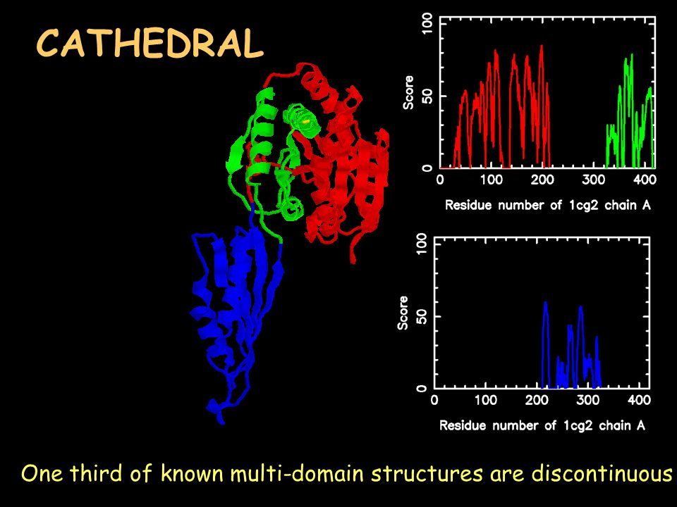 One third of known multi-domain structures are discontinuous