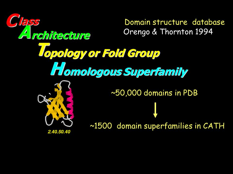 Domain structure database
