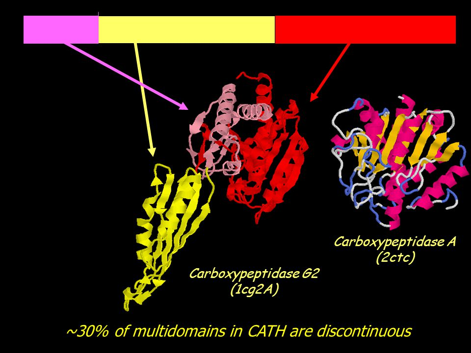 ~30% of multidomains in CATH are discontinuous