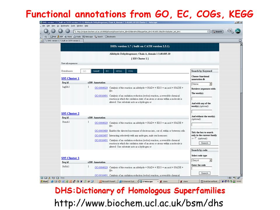 Functional annotations from GO, EC, COGs, KEGG