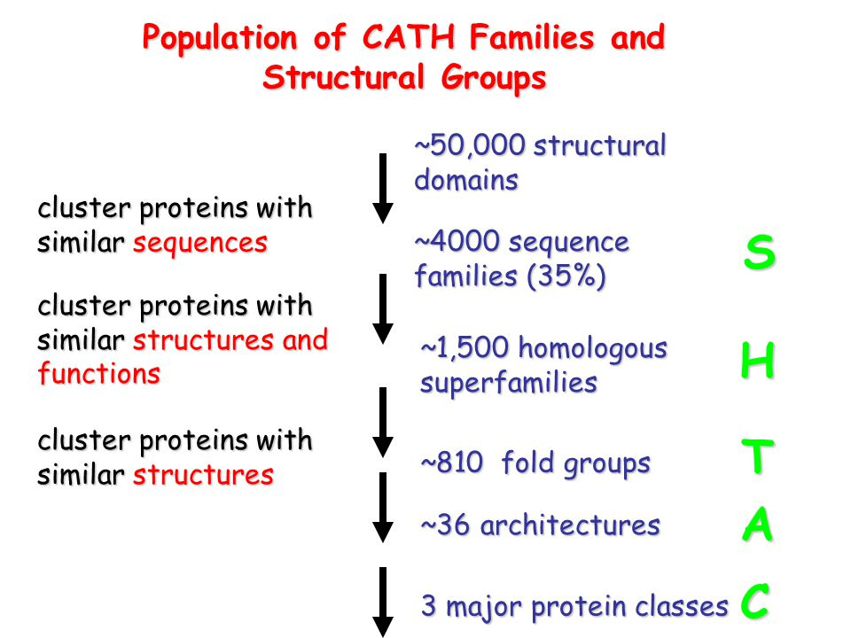 Population of CATH Families and Structural Groups