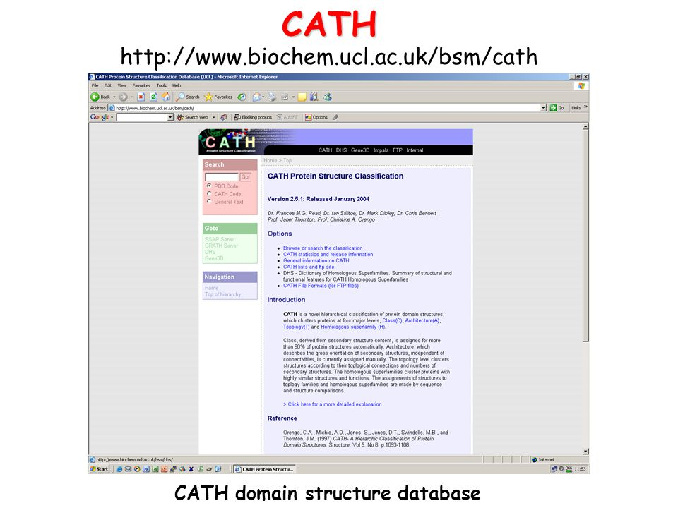 CATH domain structure database
