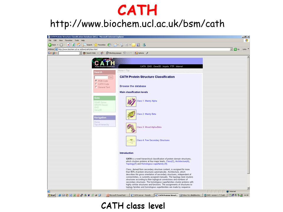CATH http://www.biochem.ucl.ac.uk/bsm/cath CATH class level