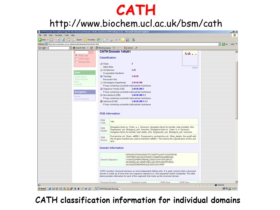 CATH classification information for individual domains