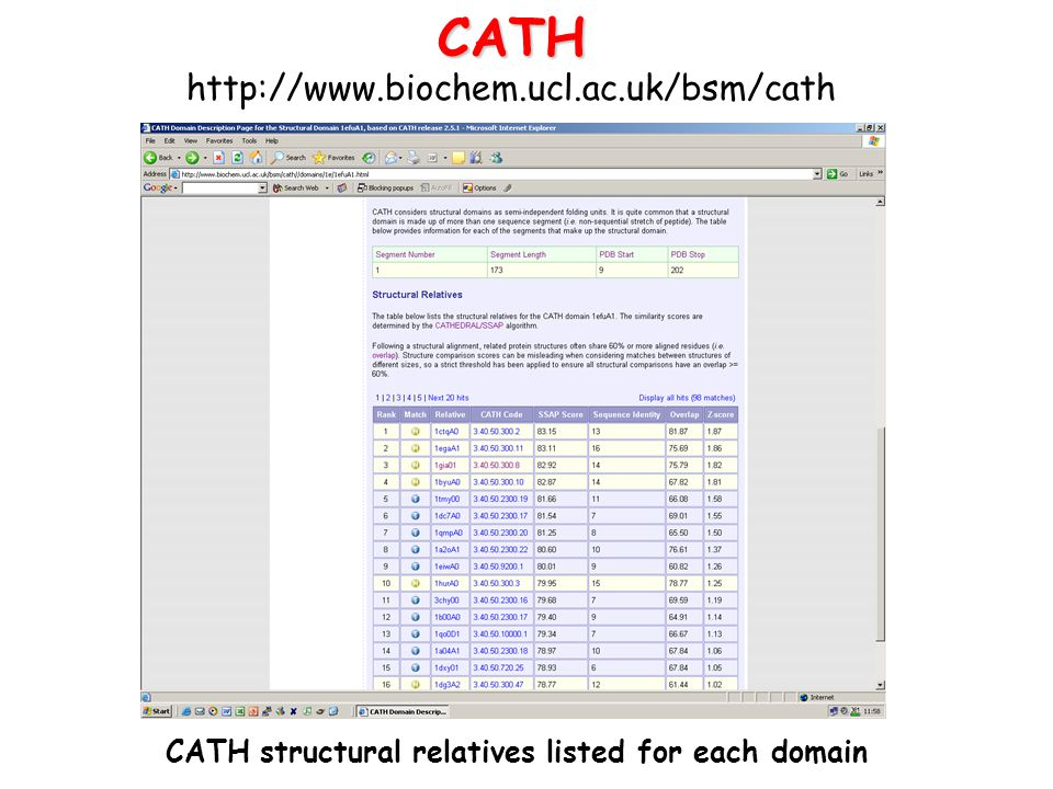 CATH structural relatives listed for each domain