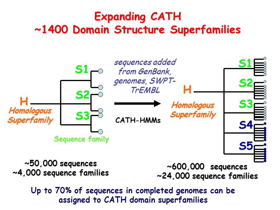 ~1400 Domain Structure Superfamilies