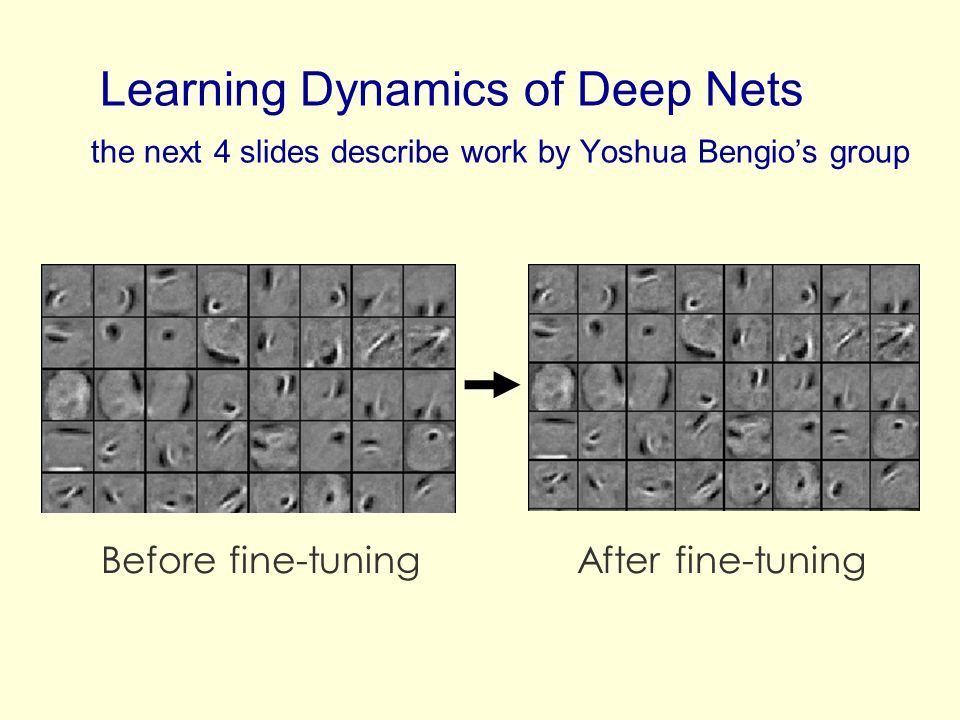 Learning Dynamics of Deep Nets