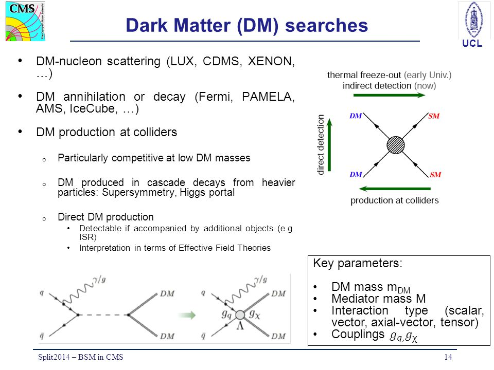 Dark Matter (DM) searches