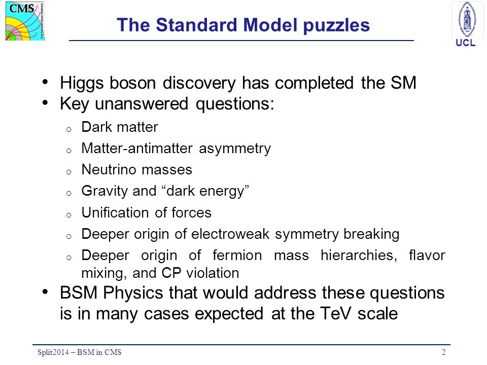 The Standard Model puzzles