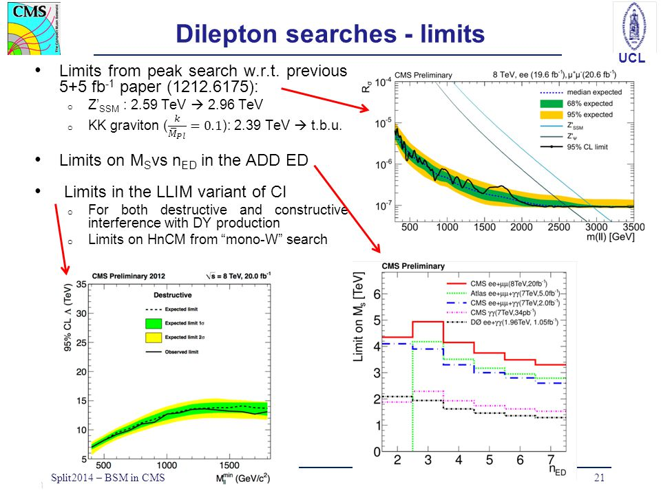 Dilepton searches - limits