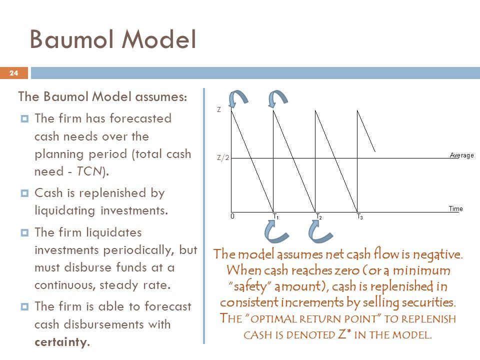 The model assumes net cash flow is negative.