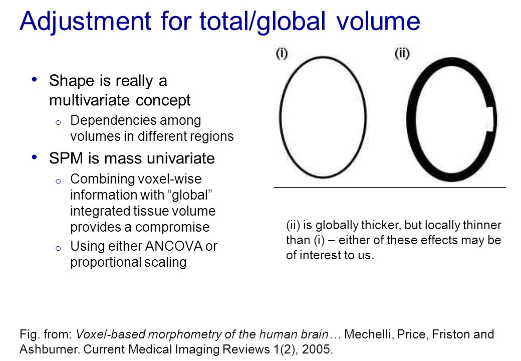 Adjustment for total/global volume
