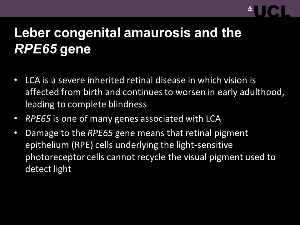 Leber congenital amaurosis and the RPE65 gene