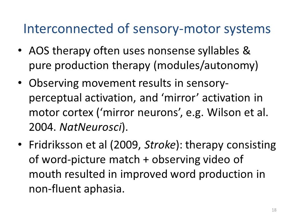 Interconnected of sensory-motor systems