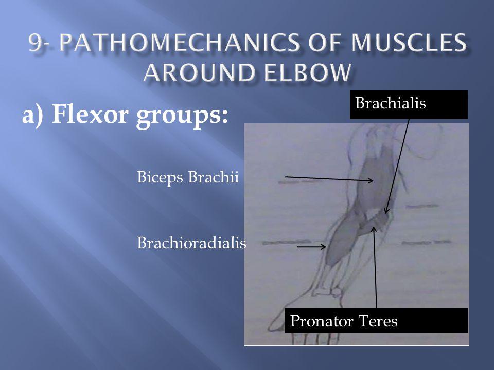 9- pathomechanics of Muscles around elbow