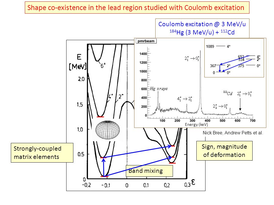 Shape co-existence in the lead region studied with Coulomb excitation