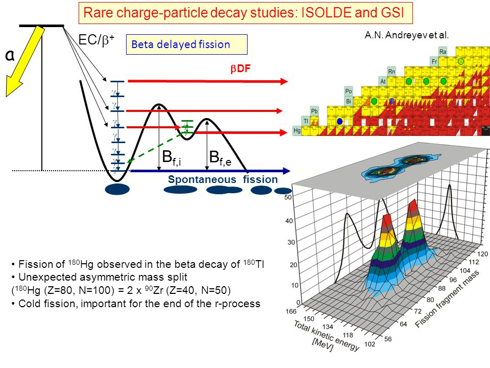 a Bf,i Bf,e Rare charge-particle decay studies: ISOLDE and GSI EC/b+