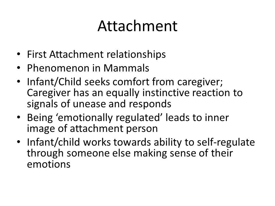 Attachment First Attachment relationships Phenomenon in Mammals