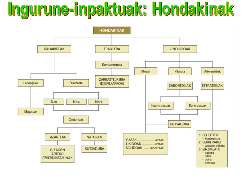 Ingurune-inpaktuak: Hondakinak