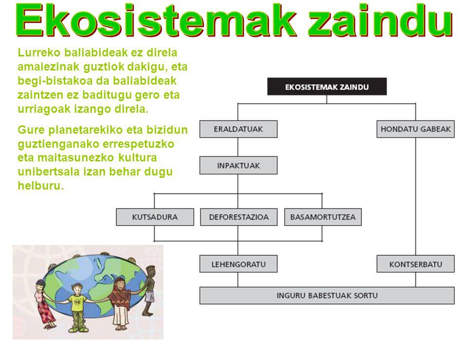 Ekosistemak zaindu