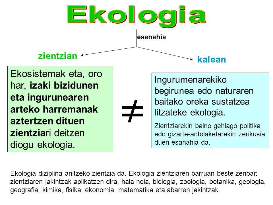 Ekologia esanahia. zientzian. kalean.