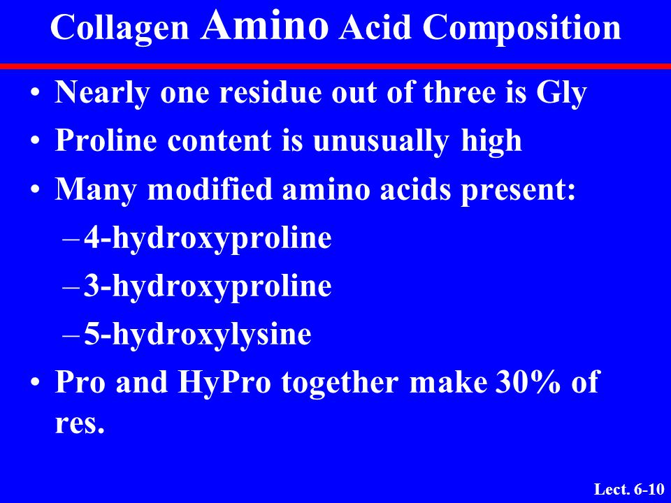 Collagen Amino Acid Composition