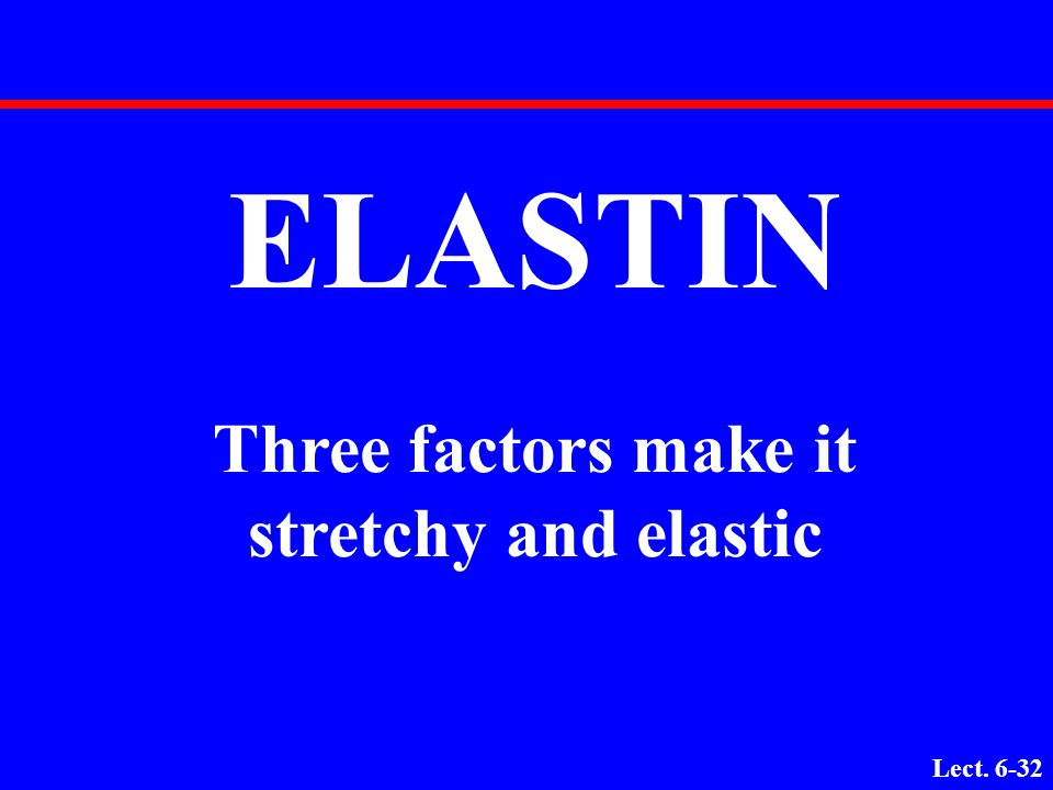 Three factors make it stretchy and elastic