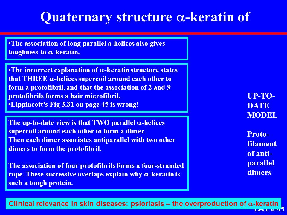 Quaternary structure a-keratin of