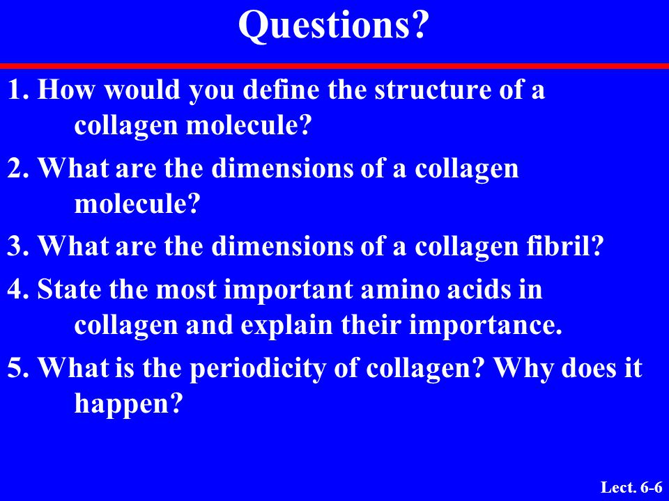 Questions 1. How would you define the structure of a collagen molecule 2. What are the dimensions of a collagen molecule