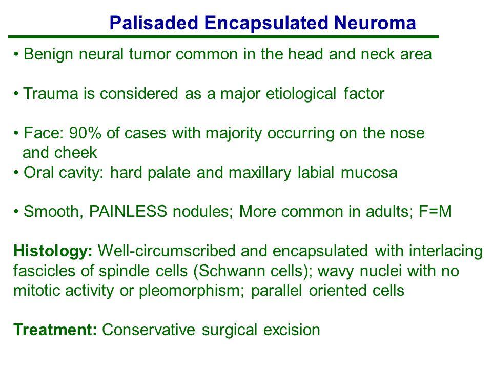 Palisaded Encapsulated Neuroma