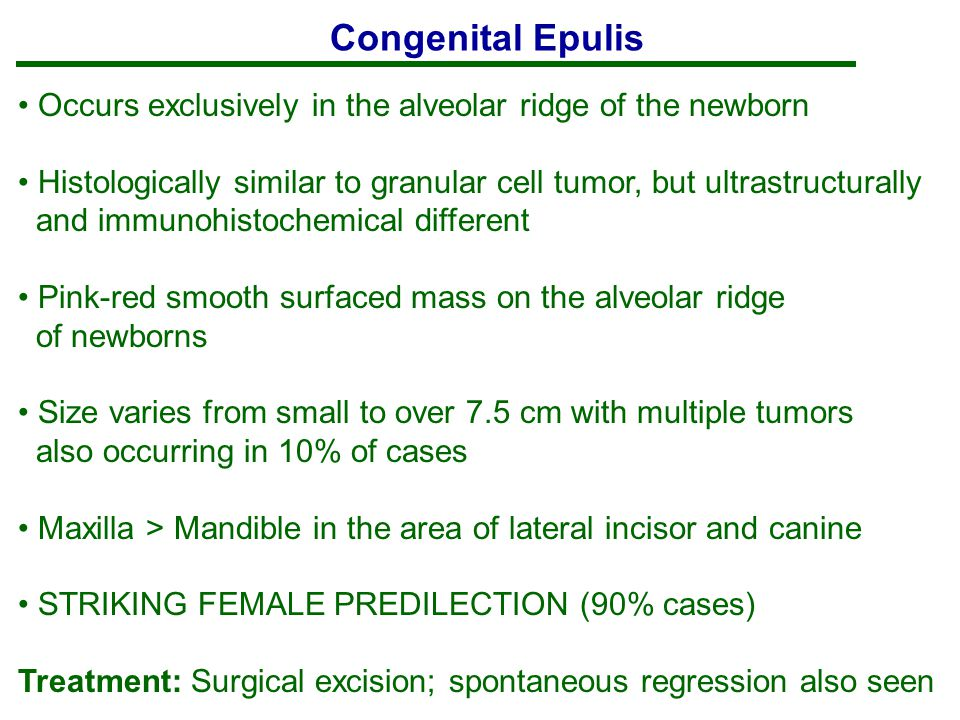 Congenital Epulis Occurs exclusively in the alveolar ridge of the newborn. Histologically similar to granular cell tumor, but ultrastructurally.