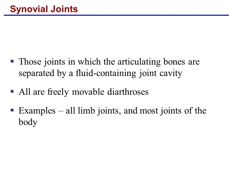 All are freely movable diarthroses