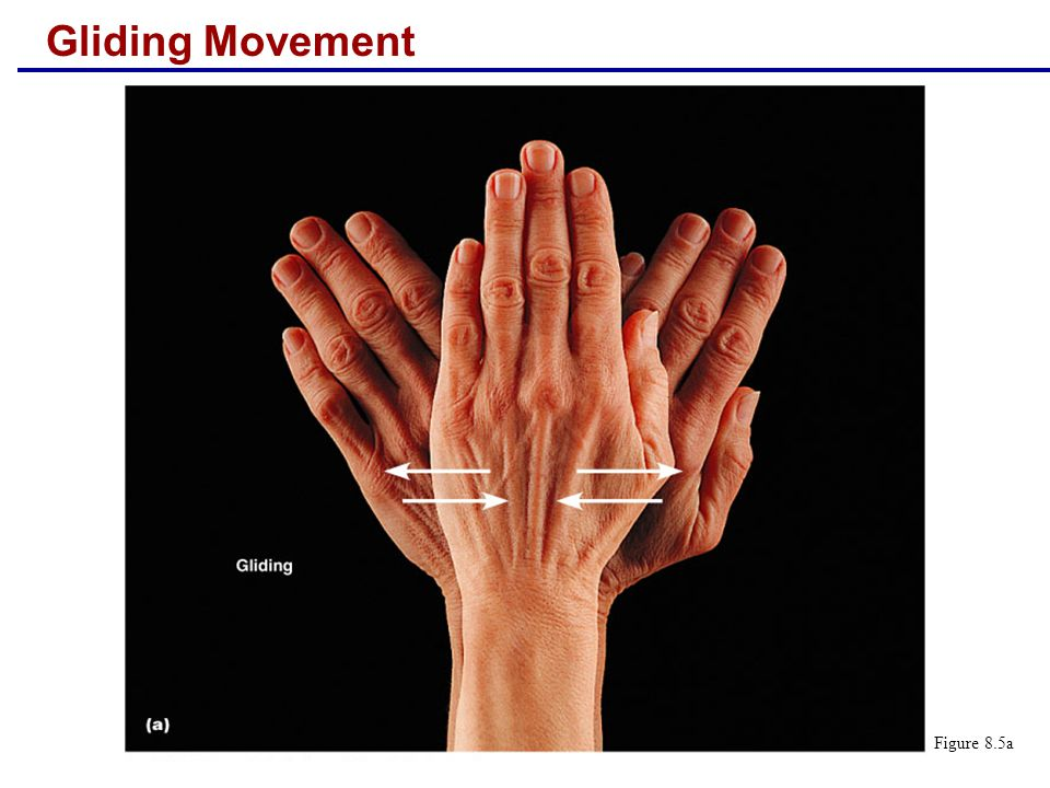 Gliding Movement Figure 8.5a