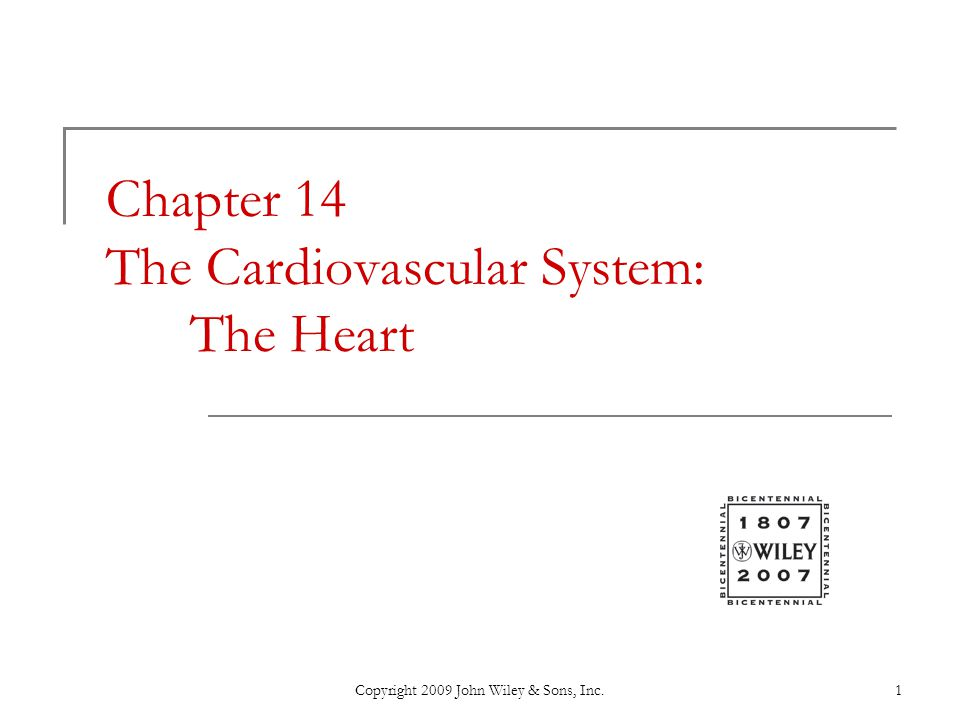 Chapter 14 The Cardiovascular System: The Heart