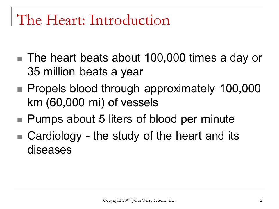 The Heart: Introduction