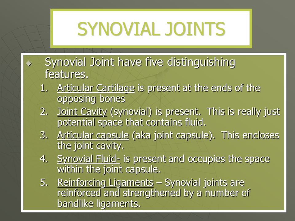 SYNOVIAL JOINTS Synovial Joint have five distinguishing features.