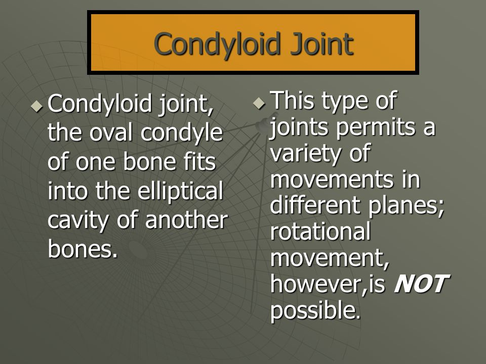 Condyloid Joint Condyloid joint, the oval condyle of one bone fits into the elliptical cavity of another bones.