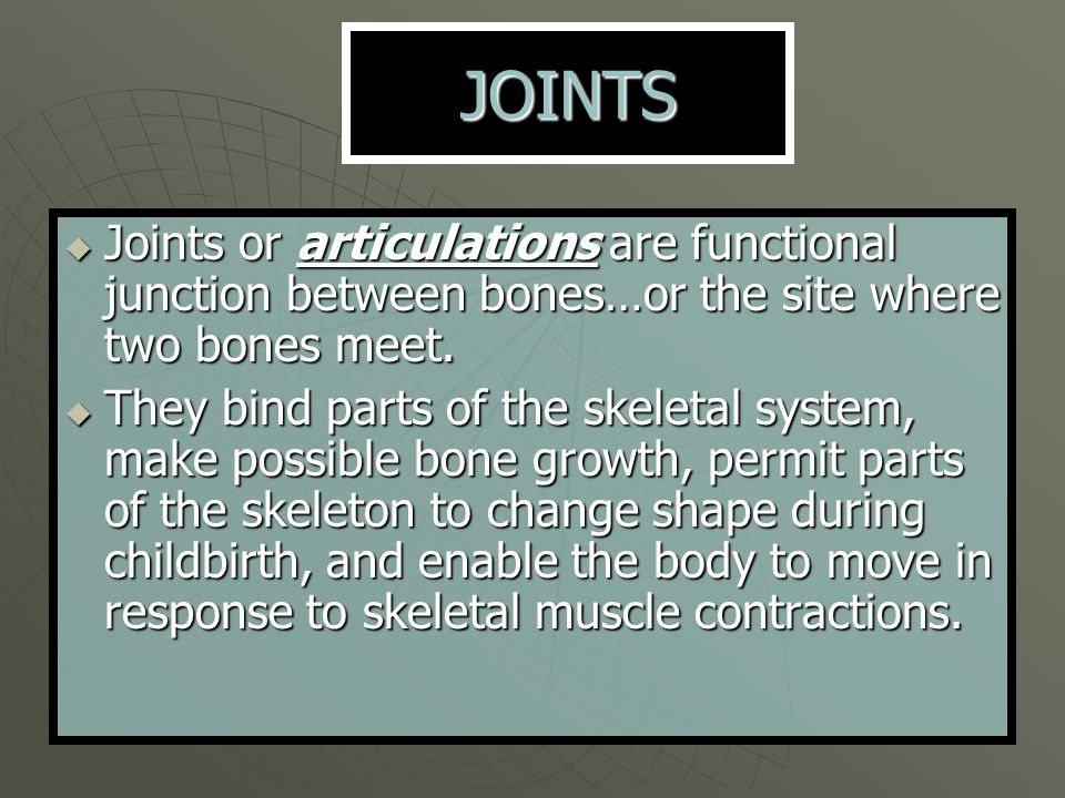 JOINTS Joints or articulations are functional junction between bones…or the site where two bones meet.