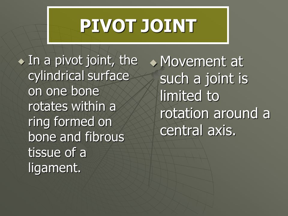 PIVOT JOINT In a pivot joint, the cylindrical surface on one bone rotates within a ring formed on bone and fibrous tissue of a ligament.