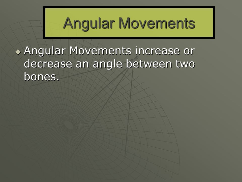 Angular Movements Angular Movements increase or decrease an angle between two bones.