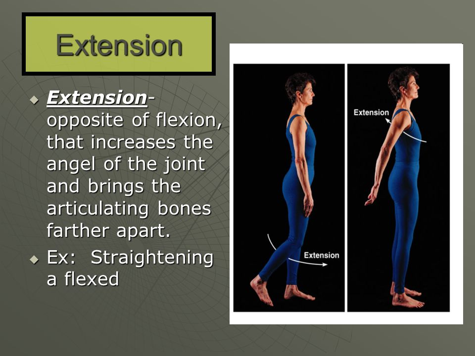 Extension Extension- opposite of flexion, that increases the angel of the joint and brings the articulating bones farther apart.
