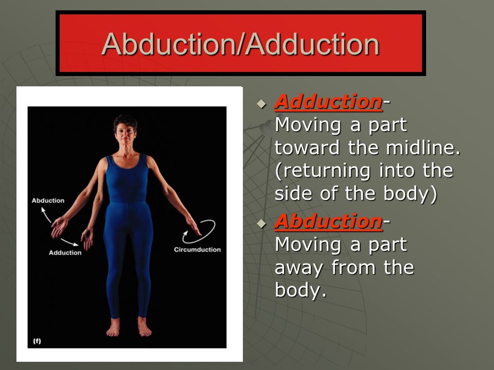 Abduction/Adduction Adduction- Moving a part toward the midline. (returning into the side of the body)