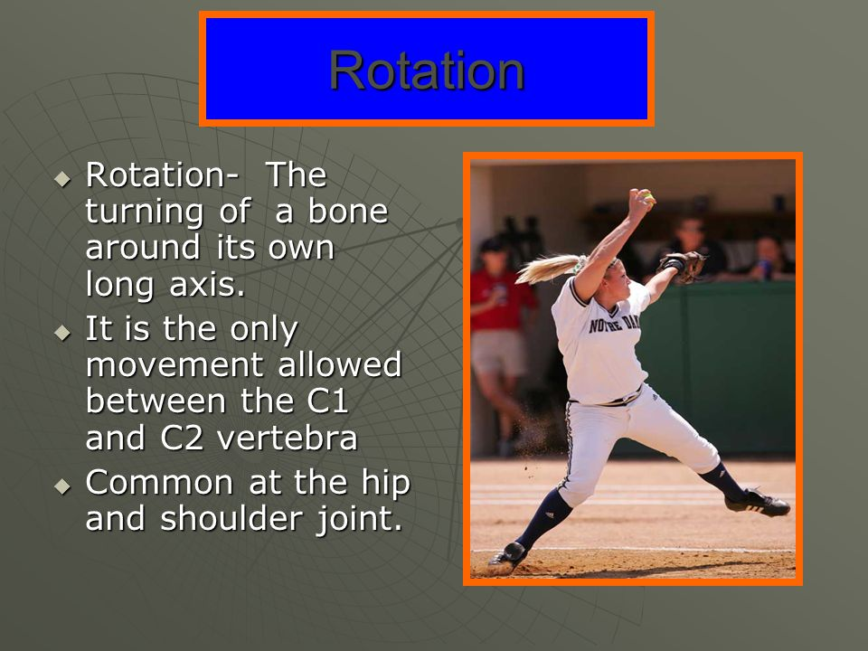 Rotation Rotation- The turning of a bone around its own long axis.