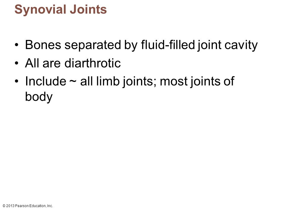 Bones separated by fluid-filled joint cavity All are diarthrotic