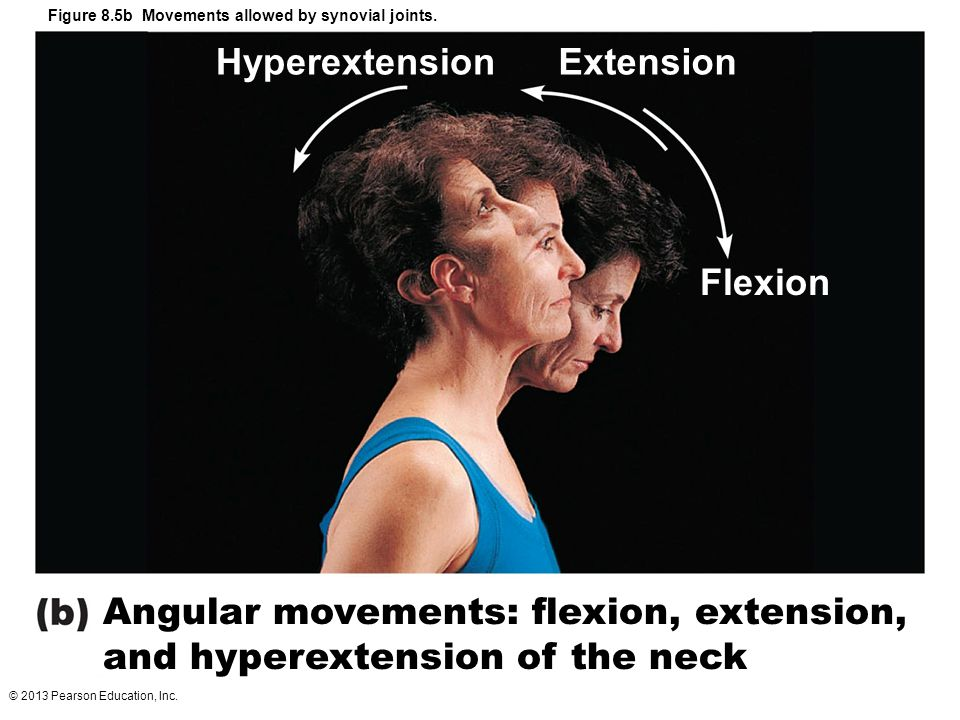Hyperextension Extension Flexion