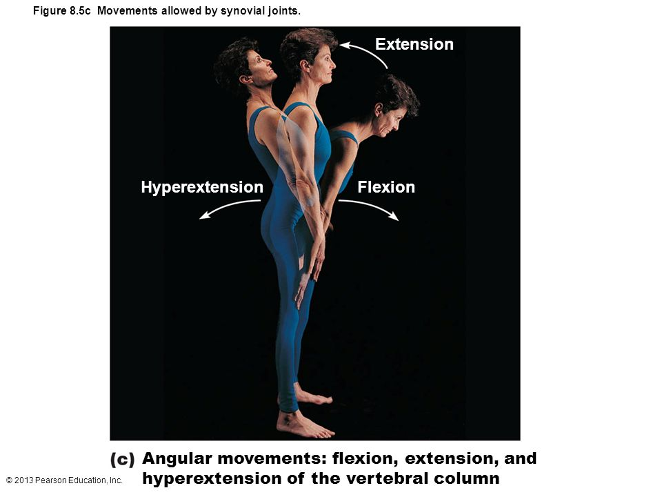 Extension Hyperextension Flexion