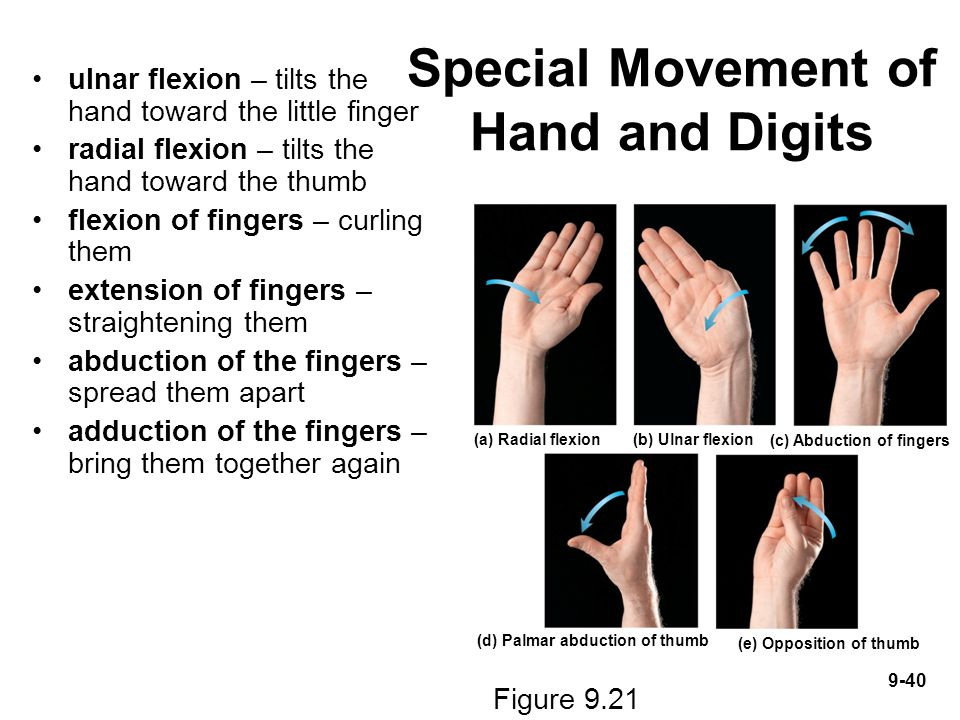 Special Movement of Hand and Digits