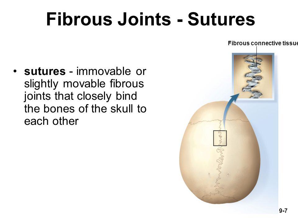 Fibrous Joints - Sutures